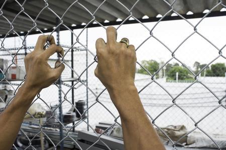 prisoners: Prisoners are in prison