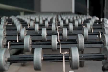 conveyer: conveyor belt