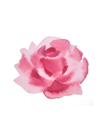 Pink rose watercolor .valentine Greeting Card.  Festive love postcard.watercolor painting,watercolour hand painted on white background