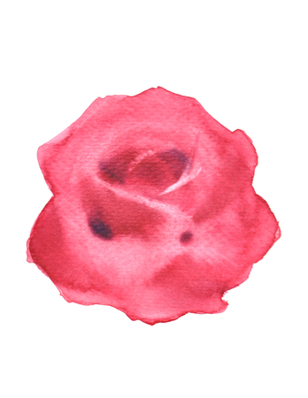 Red rose watercolor .valentine Greeting Card.  Festive love postcard.watercolor painting,watercolour hand painted on white background