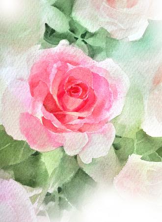 Rosa rosa acquerello dipinto a mano, isolato su bianco Archivio Fotografico - 75076985
