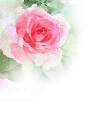 pink rose  watercolor hand-painted Archivio Fotografico
