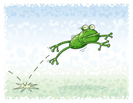 sapo: Salto de la rana verde en el prado verde.
