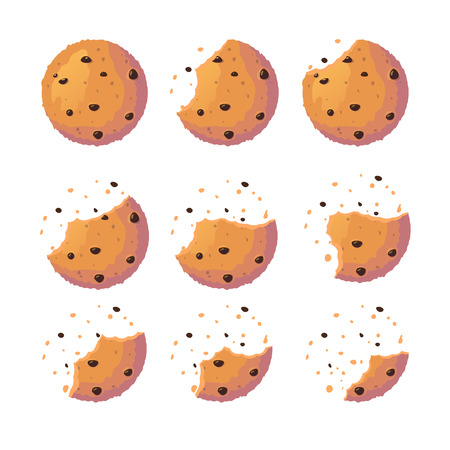 Cookie-Set. Süßer Keks mit Crush-Fragmenten. Flache Cracker-Vektor-Illustration isoliert auf weißem Hintergrund