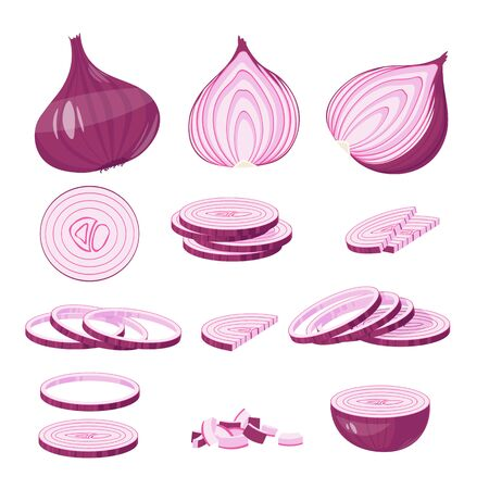 Red Onion cartoon illustration Isolated on white Vector