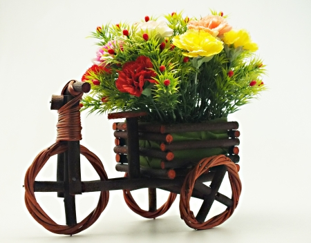flowers1 photo