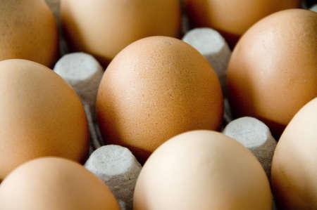 Brown eggs in carton, cleseup photo