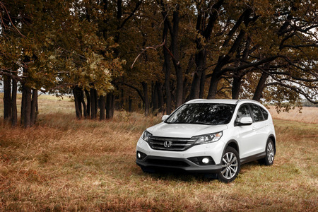 Saratov, Russia - August 29, 2014: White modern car Honda CRV stay on grass near forest at autumn Editorial