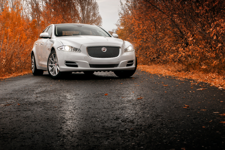 Saratov, Russie - le 16 Octobre, 2014: Whtie séjour de voitures de luxe sur mouillé route goudronnée à l'automne