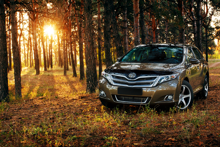 Saratov, Russia - September 29, 2014: Car Toyota Venza in the forest at sunset Editorial