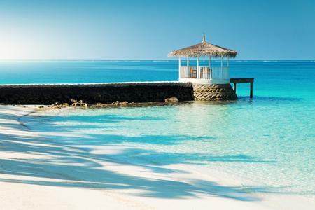 낮, 몰디브 열대 섬의 아름다운 자연 풍경 스톡 콘텐츠