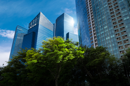 Modern blue skyscrapers and green trees at downtown district business landscape background singapore city