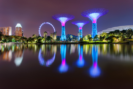 Gardens By The Bay Supertree and ferris wheel Singapore Flyer is reflected in water. Illuminated at night. Singapore city landscape
