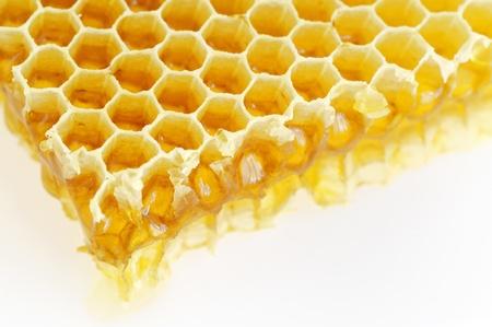 Honeycomb isolated on white photo