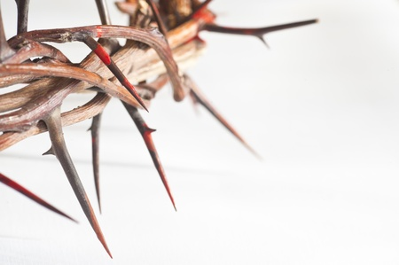 resurrection of jesus: Crown of thorns on a white background
