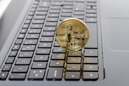 ltc: Studio shot of golden Bitcoin virtual currency on laptop. Close-up of front side.