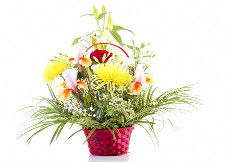 gebera: Basket with flowers for Mother on white background