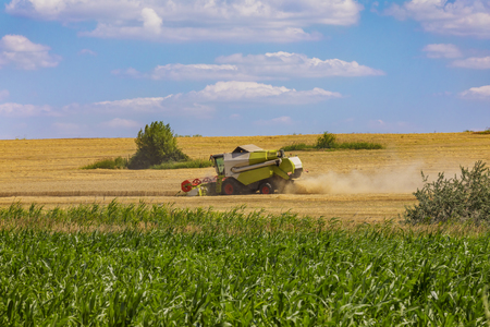 Combine harvester in action on wheat field. Palouse harvest season. Stock Photo