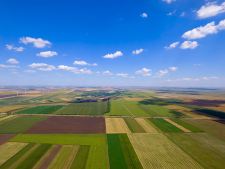 Aerial top view photo from flying drone of a land with sown green fields in countryside in summer.
