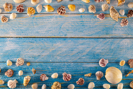 Summer time concept with sea shells on a blue wooden background. Seashells frame on wooden background nautical border. Focus on seashells.