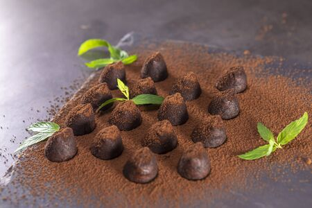 Homemade chocolate truffles with mint sprinkled with cocoa powder on slate. Focus on truffle.