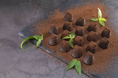 Homemade chocolate truffles with mint sprinkled with cocoa powder on slate. Focus on leaf.
