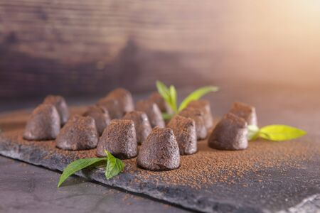 Homemade chocolate truffles with mint sprinkled with cocoa powder on slate. Focus on first truffle