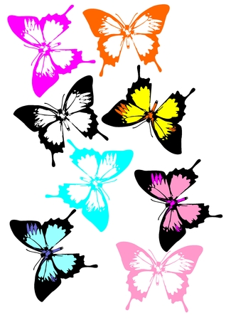 swallowtails: A collection of colorful butterflies. More Swallowtails butterflies in variety of colors.