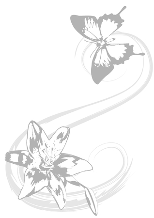antennae: Beautiful butterfly and delicate lily as background