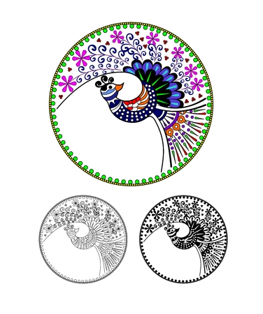 peafowl: Pavo cristatus. Peacock, Peafowl, cartoon image. Black and white and color variation. Possibility to paint the according to your idea.