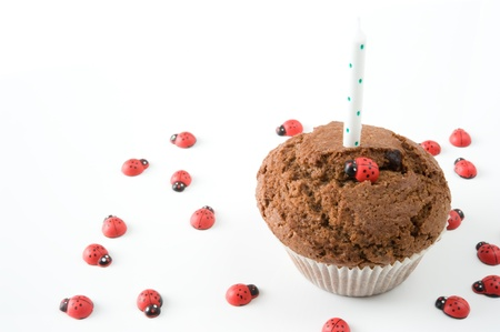 chocolate muffin with a candle and ladybirds on a white background photo