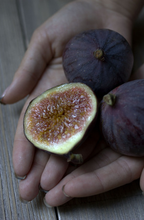 Ripe fresh figs straight from the bush