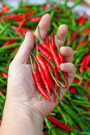 chili on hand