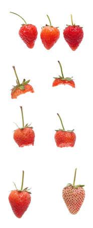 Beautiful strawberries isolated Stock Photo