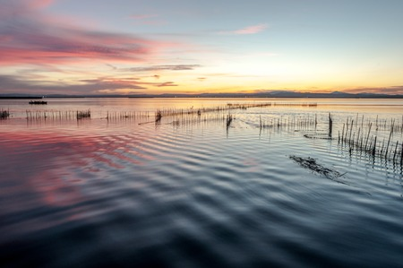 Albufera , Lagoon of Valencia, Spain