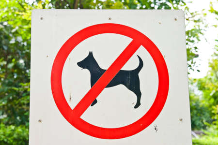 a dog doesn't walk here sign in the park  Stock Photo - 9959494