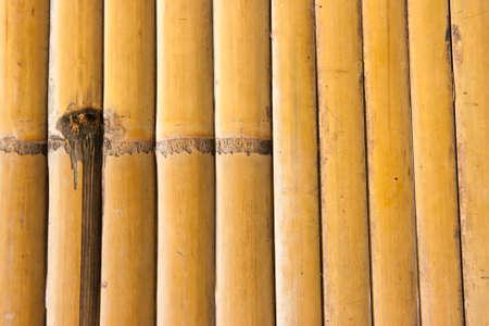 closed up bamboo background Stock Photo - 10446647