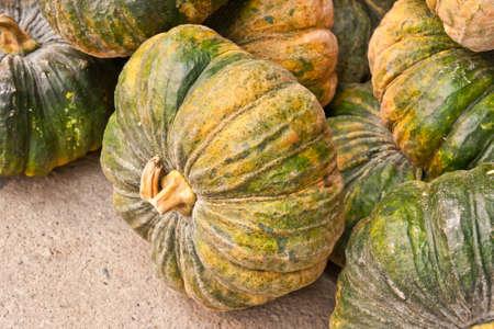 Autumnal pumpkins, harvest  photo