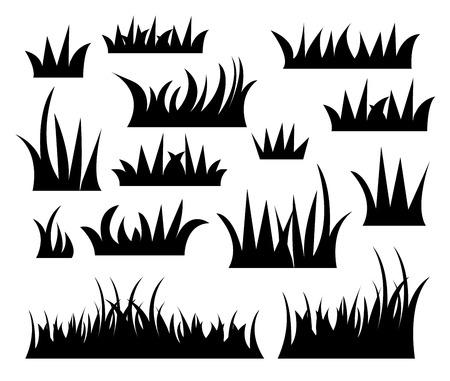 vecter: grass vector.
