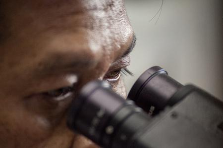 microscopy: eyes on microscopy Stock Photo