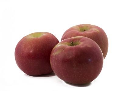 macintosh: Ripe, delicious looking Macintosh Apples