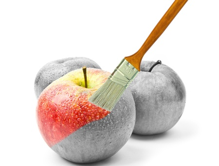 paintbrush painting a fresh red wet apple which is partly black and white and partly colored  photo