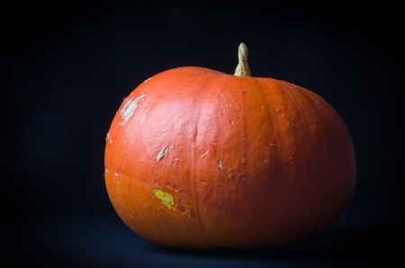 Pumpkin on black background Stock Photo - 17914345