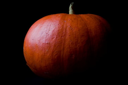 Pumpkin on black background Stock Photo - 17914604