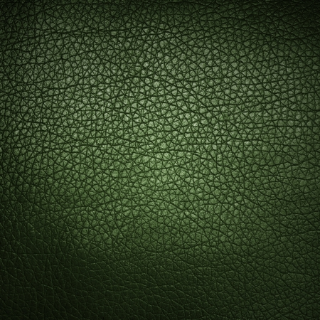 Green leather texture closeup as background