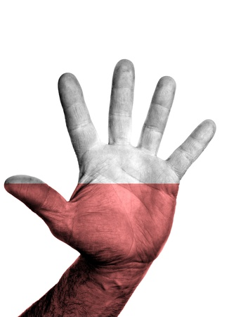 Open hand raised, multi purpose concept, Poland flag painted - isolated on white background  photo