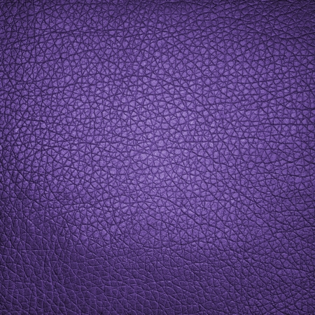 leather background or texture in high resolution