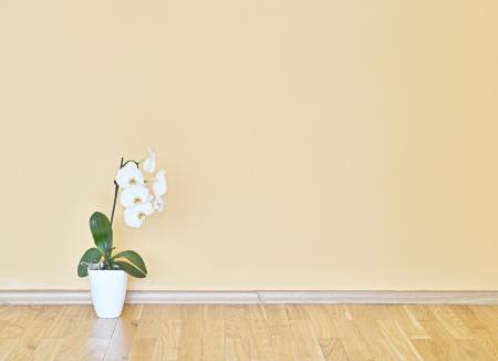 Empty yellow wall and wooden floor room  Stockfoto