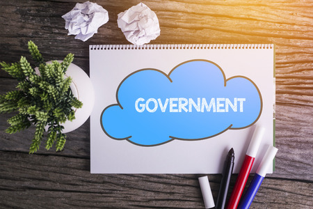 GOVERNMENT word with Notepad and green plant on wooden background