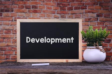 self training: Development word on blackboard with green plant